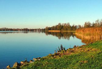 Groene Voornemens Wandeling Reeuwijkse Plassen: 'Geniet van de wintergasten op en rondom de plassen'
