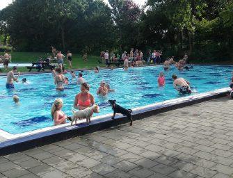 Hondenzwemmen op zondag 27 augustus bij Sportcentrum De Kuil