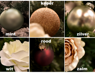 Versiert Karwei Bodegraven dit jaar de boom bij u thuis?