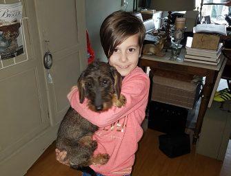 Pup Tess na bijna 24 uur weer terecht