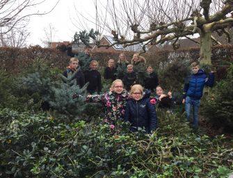 Al ruim 500 kerstbomen voor Hospice Bodegraven-Reeuwijk