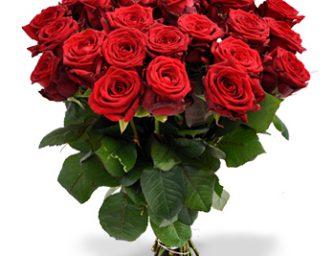 Passiflora bezorgt gratis op Valentijnsdag in Bodegraven!