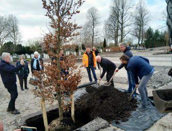 Bomen planten op BegraafplaatsVredehof in Bodegraven