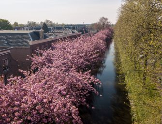 Prachtige foto's Emmakade in Bodegraven