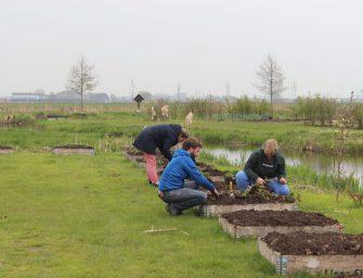 Activiteiten Hortus Populus: Serie Workshops Ecologisch moestuinieren en Hortus Populus & NL Doet